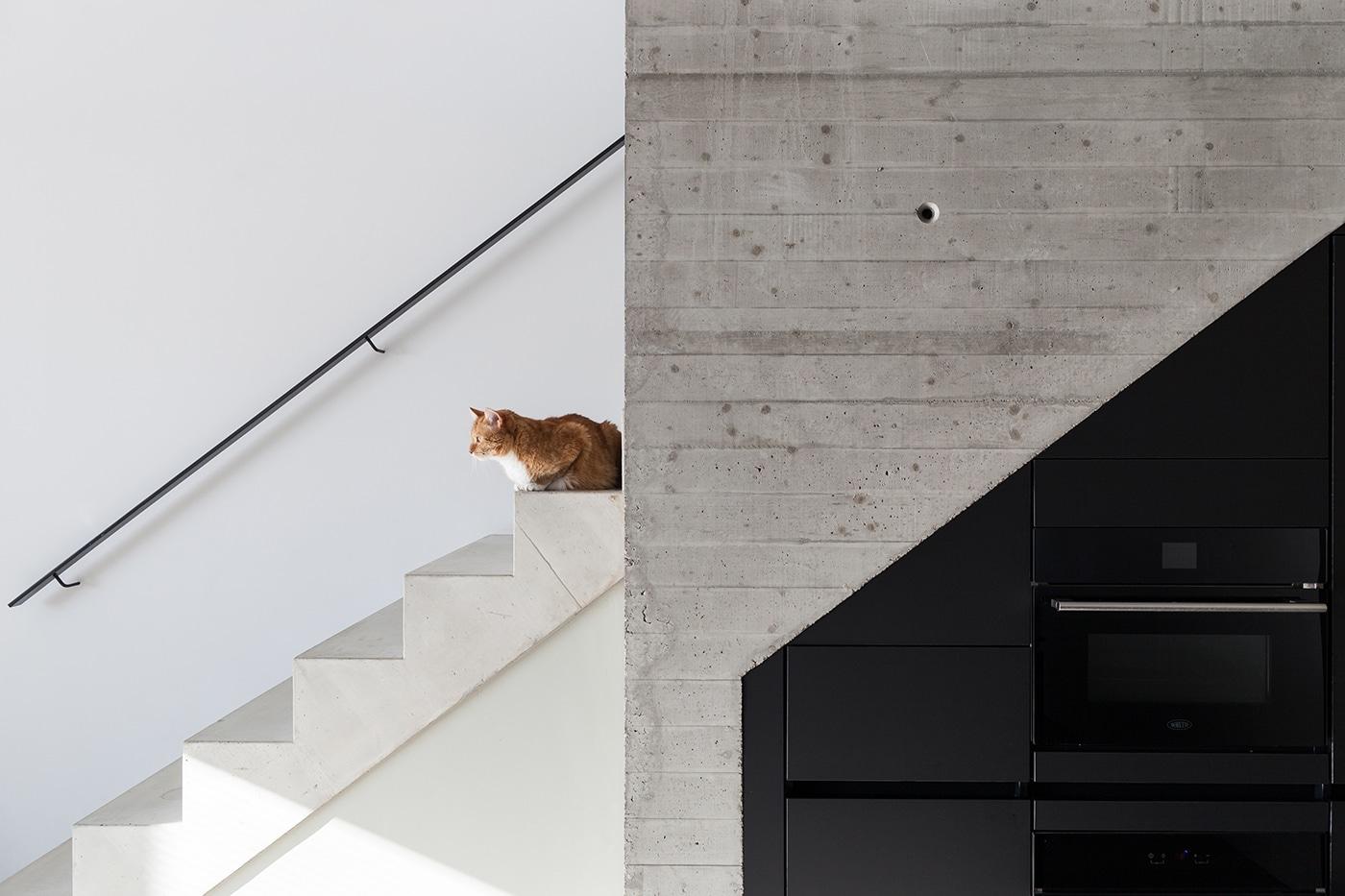 Stadsloft R+F interieur 5 trap keuken